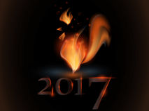 Rooster. Rooster Year. Chinese New Year of the Rooster. Royalty Free Stock Photography