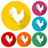 Rooster silhouette icons set with long shadow. Icon Stock Photography