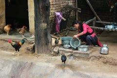 Rooster slum poverty India Stock Photos