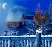 Rooster standing in winter Christmas landscape.Symbol of New Yea Royalty Free Stock Photo
