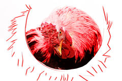 Rooster, symbol of 2017 on east calendar. red image for the new year. Symbol of 2017 on east calendar. Red fire rooster Stock Image