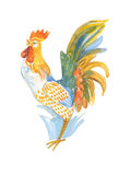 Rooster - symbol of new year Stock Image
