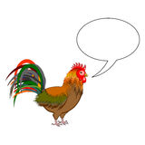 A rooster with a talking bubble Royalty Free Stock Photography