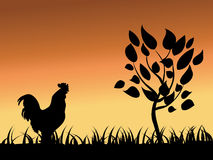 Rooster  and tree. Vector silhouette Royalty Free Stock Image