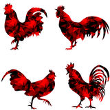 Rooster, triangular geometric polygonal roosters,  illustration of cock on white background. Triangular geometric polygonal red rooster,  illustration of cock on Royalty Free Stock Photo