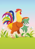 Rooster. Vector character. Royalty Free Stock Images