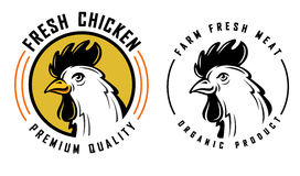 Rooster vector template Stock Photography