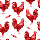 Rooster watercolor illustration isolated Royalty Free Stock Photos