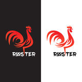 Rooster on white background. Royalty Free Stock Photography
