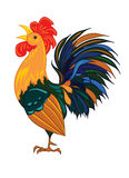 Rooster on a white background, Stock Photo