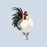Rooster white and black. Happy new year card with rooster. Bird on a light grey background, white plumage, black tail, red comb. Vector illustration of symbol of Royalty Free Stock Photos