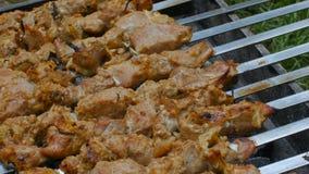 Roosteren gemarineerd shashlik op een grill Shashlik is een vorm van Kebab populair in Oostelijk, Midden-Europa en andere stock video
