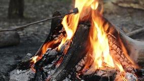 Roosterende Heemst over Brand