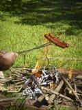 Roosterende hotdogs over het kampvuur royalty-vrije stock afbeelding