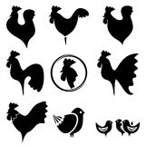 Roosters collection Royalty Free Stock Photo