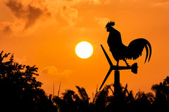 Roosters crow stand on a wind turbine Stock Image