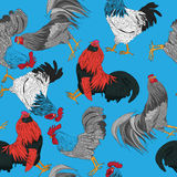 Roosters pattern Stock Images