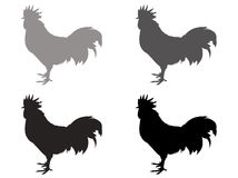 Roosters silhouette Royalty Free Stock Images