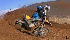 roosting грязи Стоковое Фото