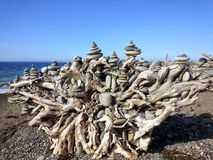 Stump of Stacked Stones Dungeness Spit. The root ball of this piece of driftwood has had stacks of stones collected from the beach artistically placed creating a stock photo