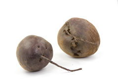 Root beet - isolated on white background Royalty Free Stock Photo
