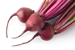 Root-crop of beets with green tops Royalty Free Stock Photography