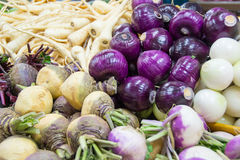 Root crops Stock Image