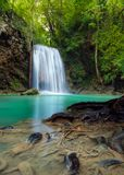 Root and falls at Erawan National Park of Thailand., Scenery of Stock Photos