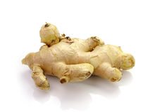 Root ginger  on  white  background. Stock Photo