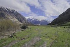 Root of a mountain Kazbek, Georgia Royalty Free Stock Photos