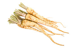 Root Parsley. A bunch of fresh trimmed root parsley roots Stock Photo
