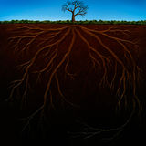 Root Structure Digital Painting. Digital painting of underground tree roots Stock Photography