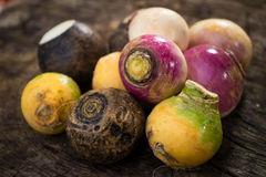 Root-Tuber vegetables Royalty Free Stock Photography