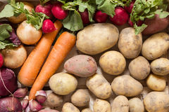 Root vegetable arranged in a wooden box Stock Photo