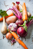 Root vegetables Stock Image