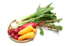 Root vegetables on a bamboo colander. Pictured root vegetables on a bamboo colander Stock Images