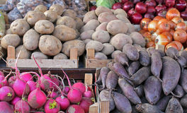 Root vegetables Royalty Free Stock Photography