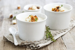 Root vegetables soup Royalty Free Stock Photo