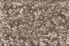 Roots, branches and leaves on the ground in autumn royalty free illustration