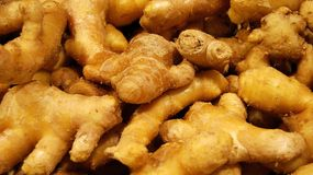 Roots of ginger Royalty Free Stock Photos
