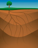 Roots Ground Background stock illustration