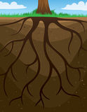 Roots Tree Background. A tree with roots background vector illustration