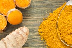 Roots and turmeric powder - Curcuma longa royalty free stock image