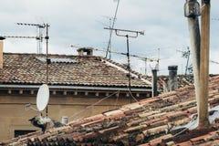 Rooves della costruzione fatti delle mattonelle con le antenne Fotografie Stock Libere da Diritti