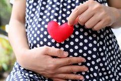 Ropa embarazada de la maternidad de los azules marinos de la ropa de mujer Foto de archivo