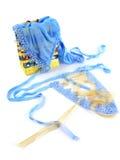 Ropa interior atractiva azul Foto de archivo libre de regalías