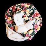 Ropa multicolora de la bufanda Imágenes de archivo libres de regalías