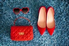 Ropa y accesorios de las mujeres Mirada de la manera Zapatos y leath rojos Fotos de archivo