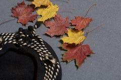 Ropa y accesorios del otoño Boina de lana Asperjado con las hojas de otoño coloridas en un fondo gris Foto de archivo