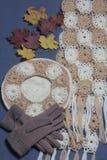 Ropa y accesorios del otoño Boina, guantes y bufanda hechos punto Asperjado con las hojas de otoño coloridas en un fondo gris Fotos de archivo